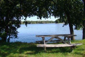 Central WI Cabin Site and Camping Land only $17,900!