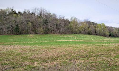 Southwest Wisconsin 36 Acre Hobby Farm!
