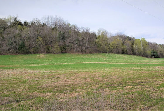 Southwest Wisconsin 36 Acre Hobby Farm!