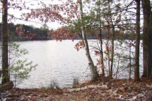 Lakefront Real Estate for Sale in Minocqua!