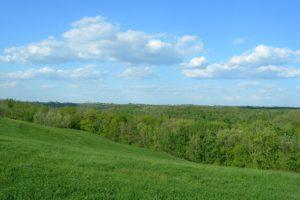 Southwest Wisconsin Log Home Site!