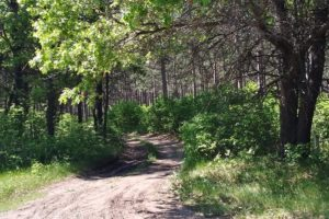 Adams County 8 Acre Property for Sale!