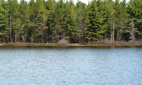 Michigan UP Lakefront with 115' of Sand Shoreline on 700 Acre Rice Lake!