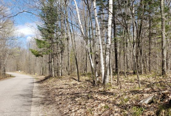 Pickerel Lake Area Wooded Land for Sale!
