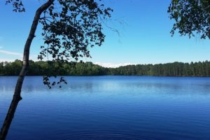 Minocqua Lakefront Property only $79,900!