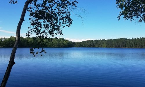 Minocqua Lakefront Property only $89,900!
