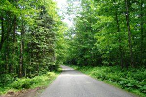 Pickerel Lake, WI Wooded Land only $28,900!