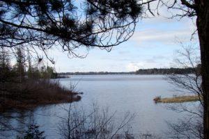 Northern Wisconsin Camp or Cabin 6 Acres; Lake Nokomis $27,900!