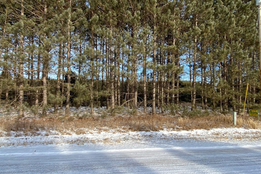 Northeast WI Getaway Property near Wausaukee, WI only $17,900!