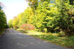 Langlade County Real Estate - 5 Acres only $24,900!