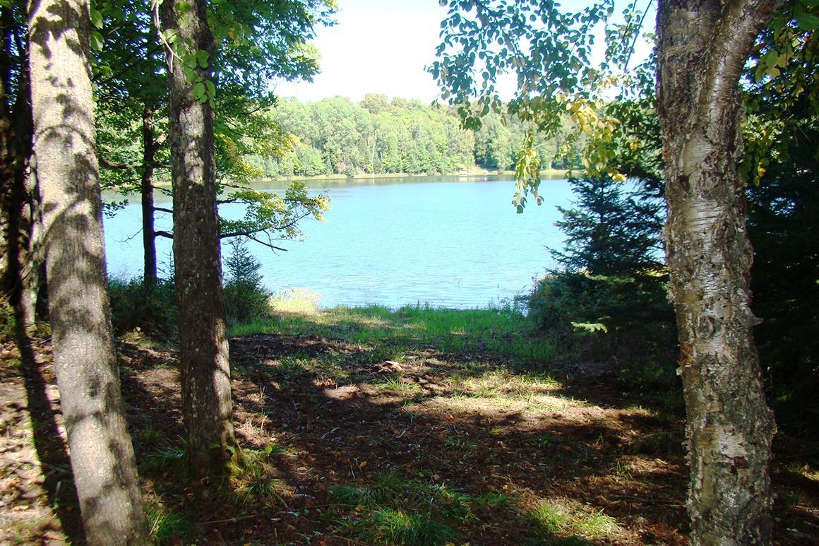 McNutt Lake