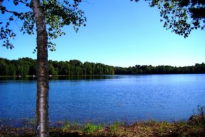 Northern WI Lakefront Cabin Property, Minocqua!