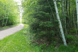 3.5 Acre Forest County Getaway by the Lakes $19,900!