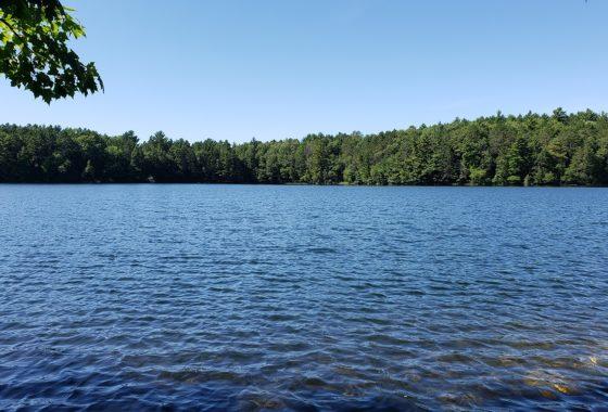 Northern Wisconsin Lakefront Property - 120' of Prime Sand Shoreline!